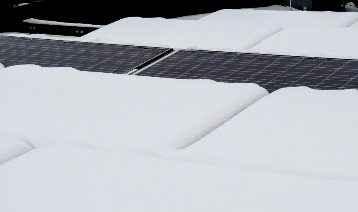 Dach / Włączona sekcja NoFrost