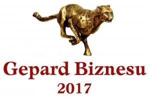 Logo promocyjne Gepard Biznesu 2017 nowe