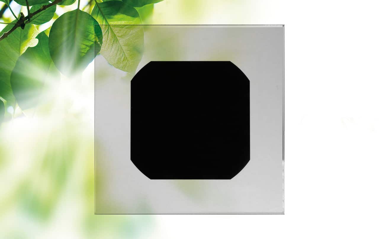 Monocrystalline cell back contact