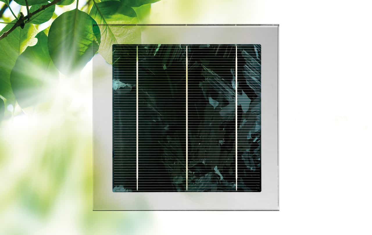 Polycrystalline cell Silver tint