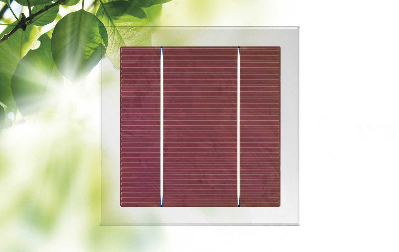Polycrystalline cell Red tint