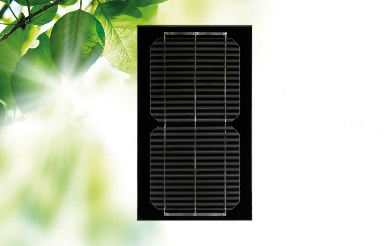 Monocrystalline cell with tinted back coat